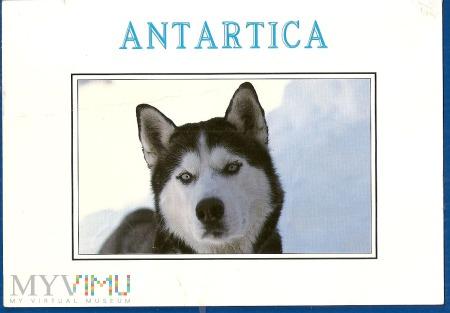Antartica.1a