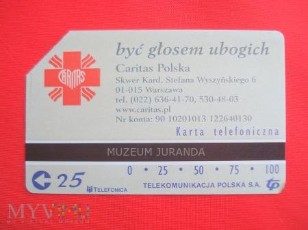 Karta magnetyczna 1196