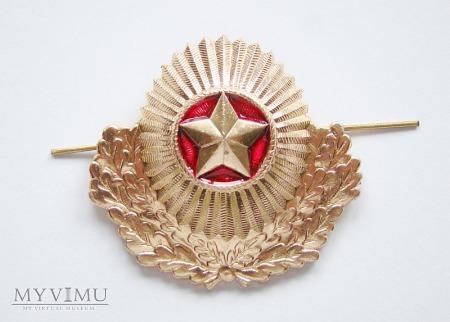 Odznaka białoruskich wojsk lądowych.