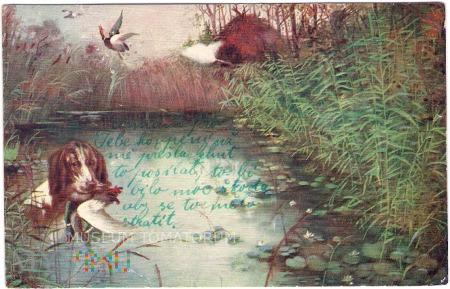 Polowanie na kaczki - I ćw. XX wieku