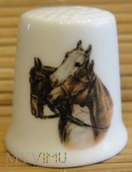(4)FENTON-konie