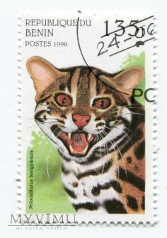 Koty dzikie Benin 1996 zestaw znaczki