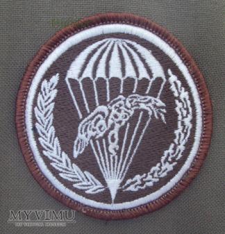 Oznaka 18 batalion desantowo-szturmowy 6PBPD