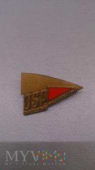 Brązowa Odznaka Młodzieżowej Drużyny Pożarniczej