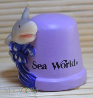 USA/SeaWorld/rekin