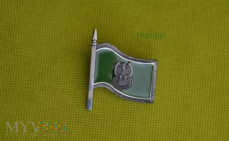 """Odznaka """"Wzorowy Pododdział Wojsk Lądowych"""""""