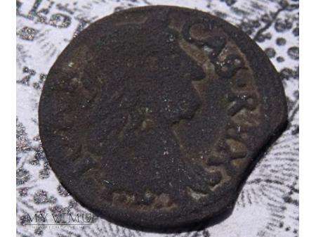 szeląg koronny 1664 24