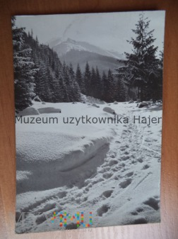TATRY - Droga na Polanę Chochołowską