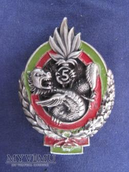5 régiment étranger d'infanterie, type 2.D.Ber.