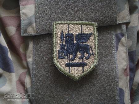 Southern European Task Force (SETAF) - polowa