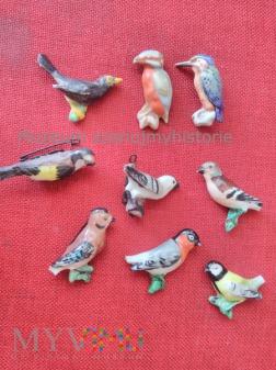 KWHW Vögel unserer Heimat