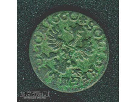 szeląg koronny 1660 3