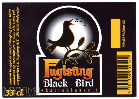 Fuglsang Black Bird