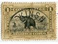 Zobacz kolekcję Znaczki KONGO - Congo Belge