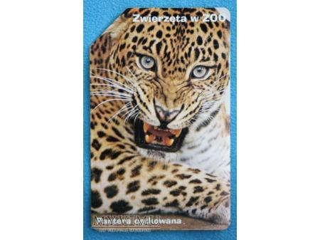 Zwierzęta w ZOO 3 (10)