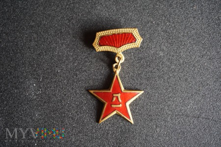 Chiński medal - odznaka AWL