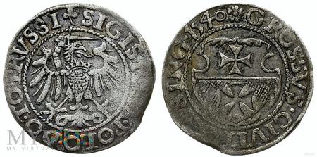 Grosz elbląski Zygmunt I Stary