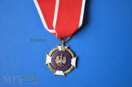 Złoty Znak Związku OSP RP