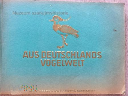 Duże zdjęcie Aus Deutschlands Vogelwelt
