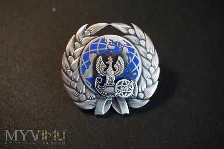 Pamiątkowa odznaka Służba Topograficzna WP Nr:102