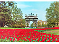 Mediolan - Arka Pokoju i tulipany