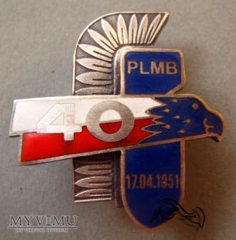 40 Pułku Lotnictwa Myśliwsko-Bombowego