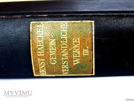 Gemeinverständliche Werke III. 1924