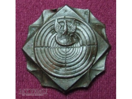 Duże zdjęcie Odznaka strzelecka