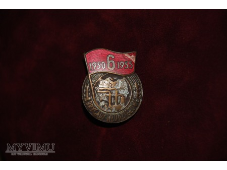Odznaka pamiątkowa Brygad Młodzieżowych