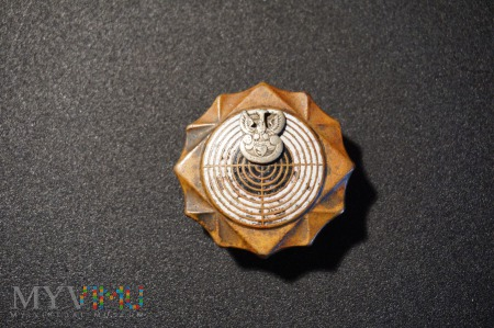 Odznaka Strzelecka -