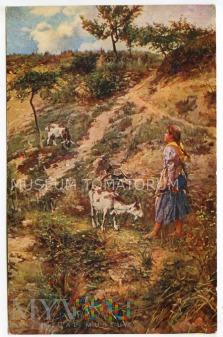 Pastuszka kóz