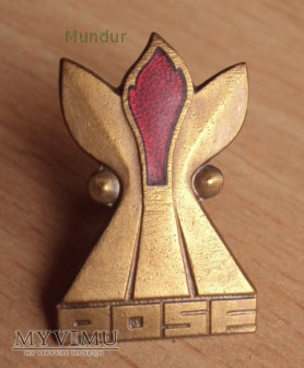 Pożarnicza Odznaka Sprawności Fizycznej - brązowa