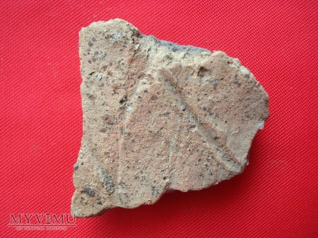 Fragmenty glinianych naczyń 7