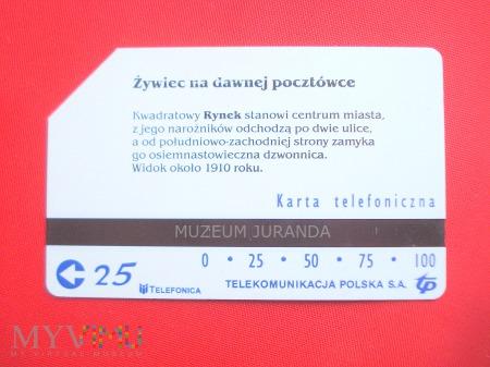 Karta magnetyczna 1156