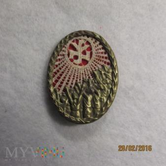NSV-Tagungsabzeichen-odznaka okolicznościowa