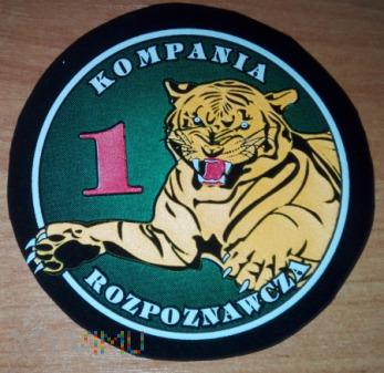 2 Pułk Rozpoznawczy Hrubieszów - 1 kompania