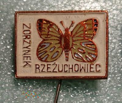 Przypinka - motyle