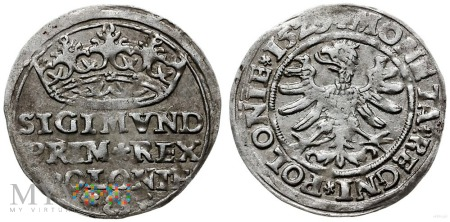 Grosz koronny Zygmunt I