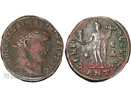 Duże zdjęcie Maximinus II