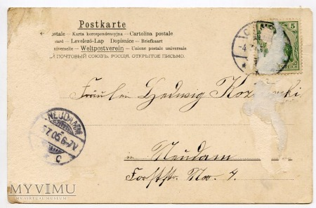 Dachshund - Jamnik świąteczno-okolicznościowy 1905