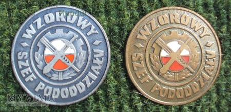 Odznaka: Wzorowy Szef Pododdziału