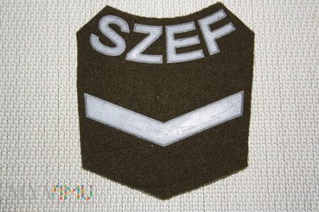 Duże zdjęcie Szef Kompanii IV stopnia Wojsk Lądowych