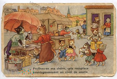 Kocie miasto, koci targ - 1953