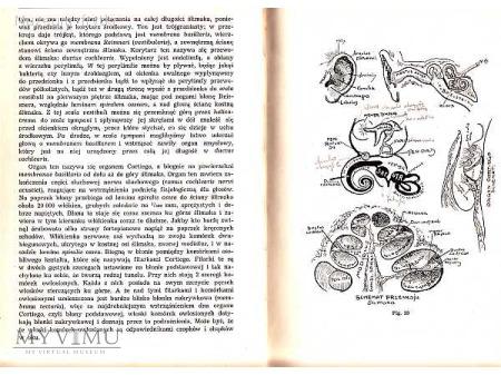 PSYCHOLOGIA t.I