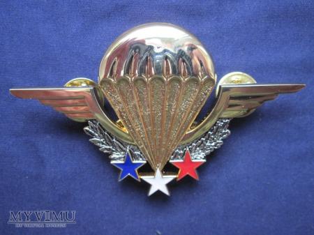 Odznaka spadochroniarza (SOCR)