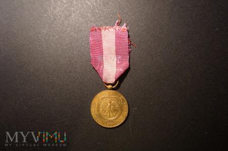 Duże zdjęcie Medal za Długoletnią Służbę - X