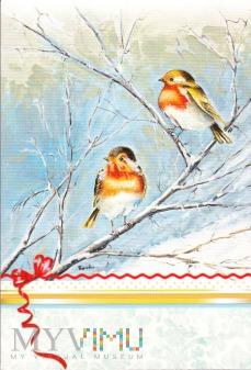 Duże zdjęcie Zimowe ptaki