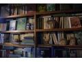 Zobacz kolekcję Książki