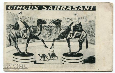 Circus Sarrasani Dresden Wielbłądy Cyrk