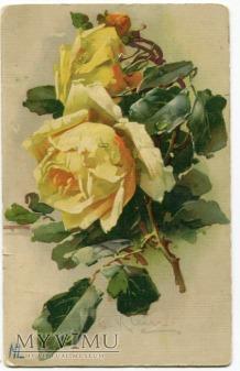 Catharina C. Klein piękne kwiaty róże Flowers 1916